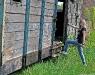 Agata na tyłach kolejki wąskotorowej w Piasecznie