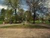 Sprzątanie Parku w Piasecznie - 13