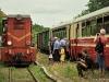 Piaseczyńska Kolej Wąskotorowa wycieczka czerwiec 2011 - zdjęcie 5