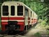 Piaseczyńska Kolej Wąskotorowa wycieczka czerwiec 2011 - zdjęcie 9