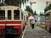 Piaseczyńska Kolej Wąskotorowa wycieczka czerwiec 2011 - zdjęcie 20