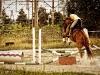 Jazda konna przy Stajni Kopytko w Białej Podlaskiej