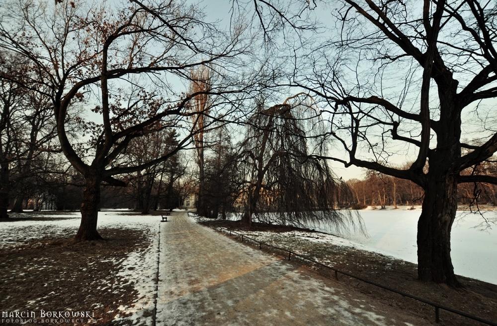 Zimowe łazienki Królewskie W Warszawie Fotoblog Marcin