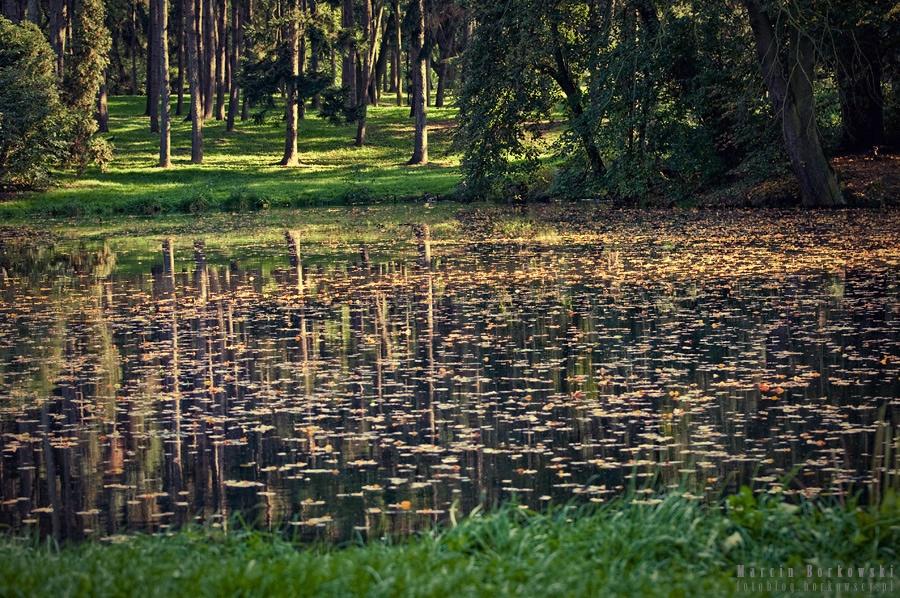 Park Skaryszewski w Warszawie