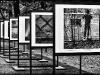 Wystawa fotografii w Parku - 18