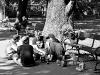Piknik uliczny w centrum Krakowa