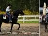 Zawody jeździeckie Wester GoldenHorse Cup 2011 w Korytach koło Prażmowa - 6