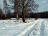 Zima w Białej Podlaskiej - 18
