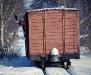 Mikołajkowa wycieczka piaseczyńską koleją wąskotorową - zdjęcie 10