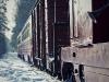 Mikołajkowa wycieczka piaseczyńską koleją wąskotorową - zdjęcie 14