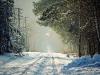 Mikołajkowa wycieczka piaseczyńską koleją wąskotorową - zdjęcie 17