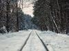 Mikołajkowa wycieczka piaseczyńską koleją wąskotorową - zdjęcie 19