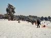 Zimowy spacer po Górkach Szymona 1