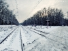 Zimowy spacer po Górkach Szymona 15