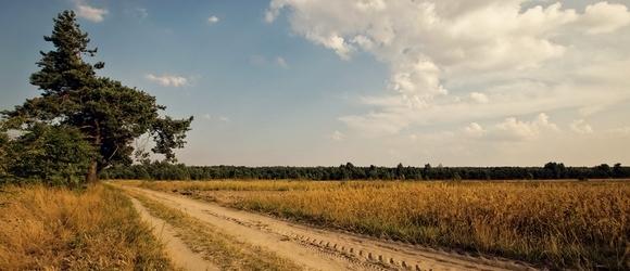 Zdjęcia z obrzeży miasta Biała Podlaska