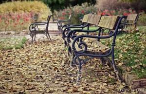 Ławki w barwach jesieni