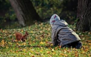 Karmienie wiewiórki w Parku