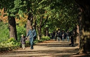 Jesienny spacer w warszawskich Łazienkach
