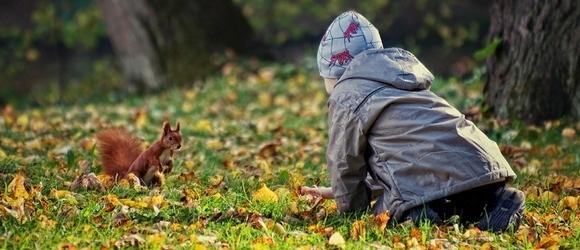 Jesień – warszawskie Łazienki Królewskie