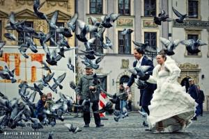Młoda Para wśród gołębi