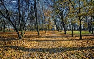 Jesienny Park Radziwiłłów w Białej Podlaskiej