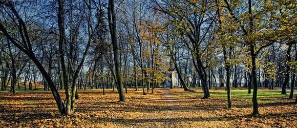 Jesień w Parku Radziwiłłów w Białej Podlaskiej