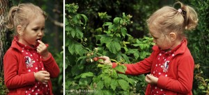Nadia podczas zbierania słodkich malin
