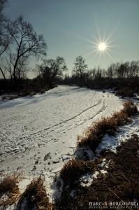 Zimowe zdjęcie Jeziorki w Zalesiu Dolnym